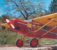 Curtiss Robin